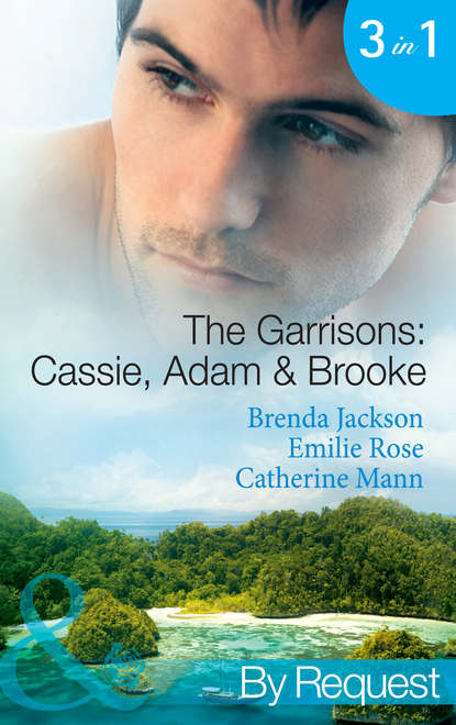 The Garrisons: Cassie, Adam & Brooke: Stranded with the Tempting Stranger