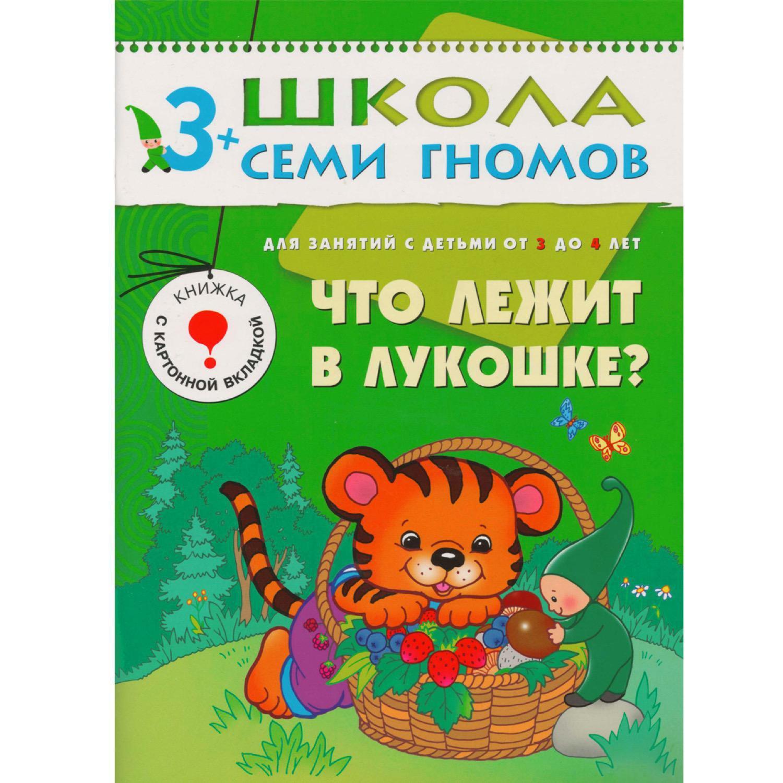 ШСГ. Четвертый год обучения. Что лежит в лукошке. Для занятий с детьми от 3 до 4 лет. Денисова Д.
