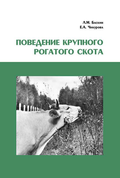Поведение крупного рогатого скота
