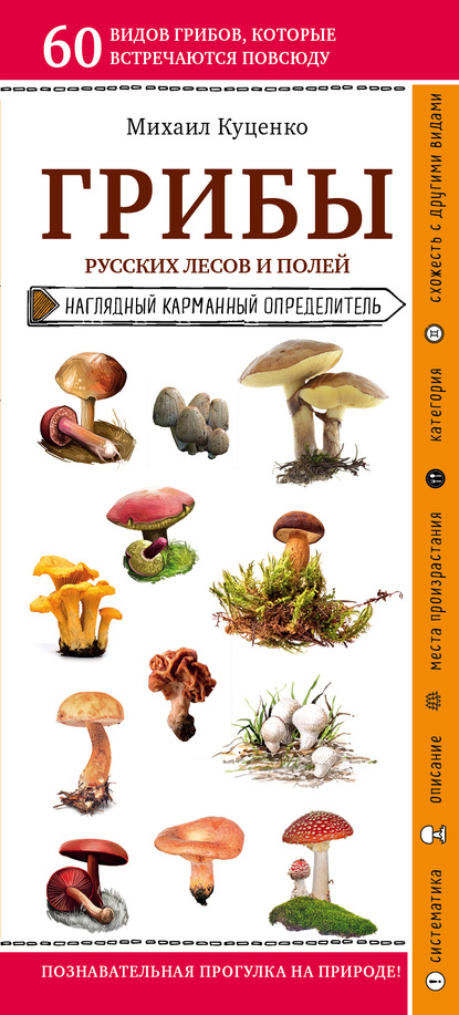 Грибы русских лесов и полей