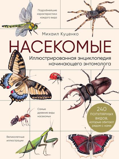 Насекомые. Иллюстрированная энциклопедия начинающего энтомолога (240 популярных видов, которые обитают рядом с нами)